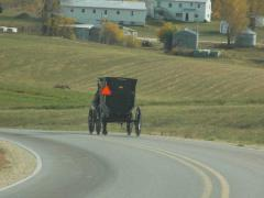 Buggy Going Down A Country Road