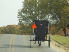 Amish Horse and Buggy Cashton, WI